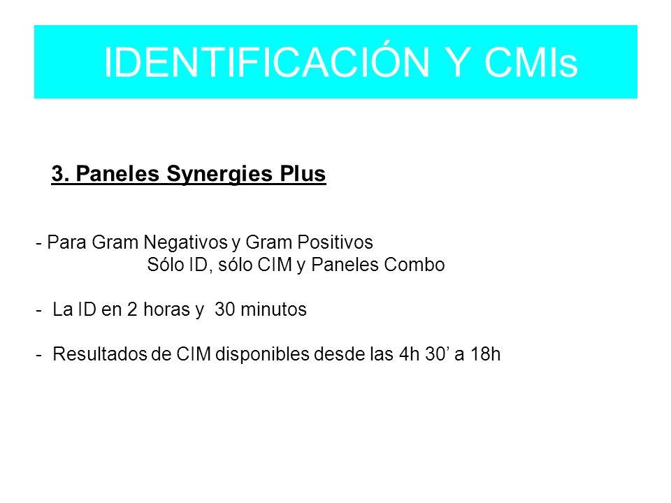 IDENTIFICACIÓN Y CMIs 3.