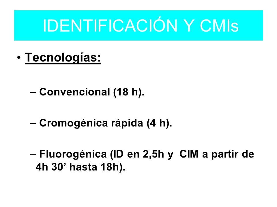 IDENTIFICACIÓN Y CMIs Tecnologías: – Convencional (18 h).