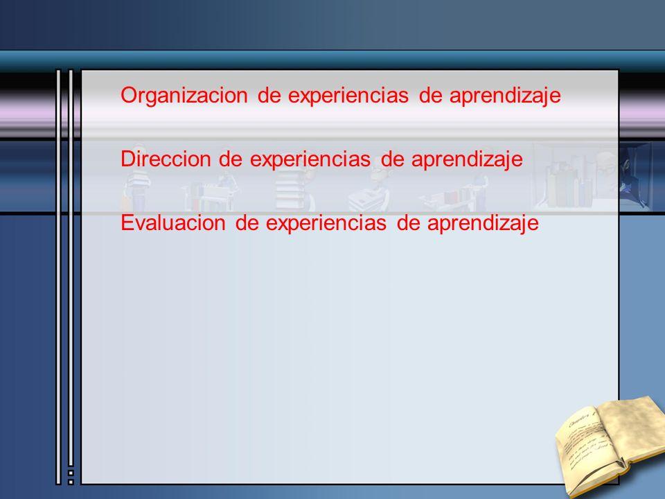 Organizacion de experiencias de aprendizaje Direccion de experiencias de aprendizaje Evaluacion de experiencias de aprendizaje