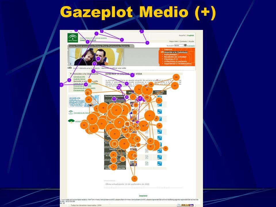 Gazeplot Medio (+)