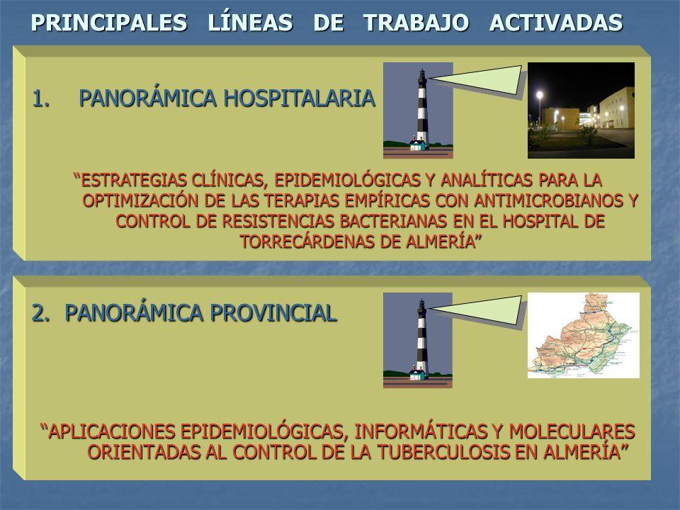 PRINCIPALES LÍNEAS DE TRABAJO ACTIVADAS 2. PANORÁMICA PROVINCIAL APLICACIONES EPIDEMIOLÓGICAS, INFORMÁTICAS Y MOLECULARES ORIENTADAS AL CONTROL DE LA