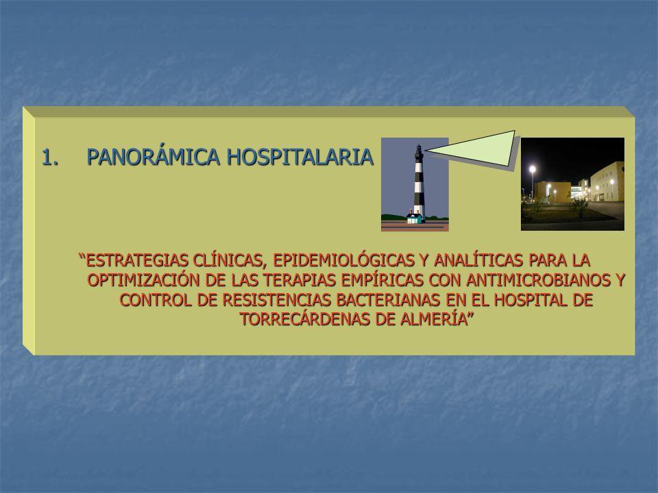 1. PANORÁMICA HOSPITALARIA ESTRATEGIAS CLÍNICAS, EPIDEMIOLÓGICAS Y ANALÍTICAS PARA LA OPTIMIZACIÓN DE LAS TERAPIAS EMPÍRICAS CON ANTIMICROBIANOS Y CON