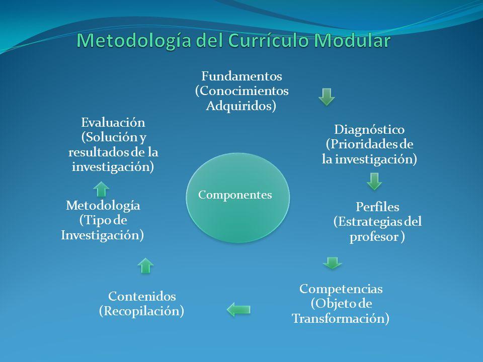 Fundamentos (Conocimientos Adquiridos) Diagnóstico (Prioridades de la investigación) Perfiles (Estrategias del profesor ) Competencias (Objeto de Tran
