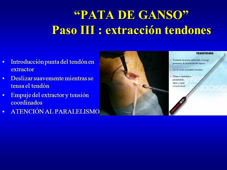 PATA DE GANSO Paso III