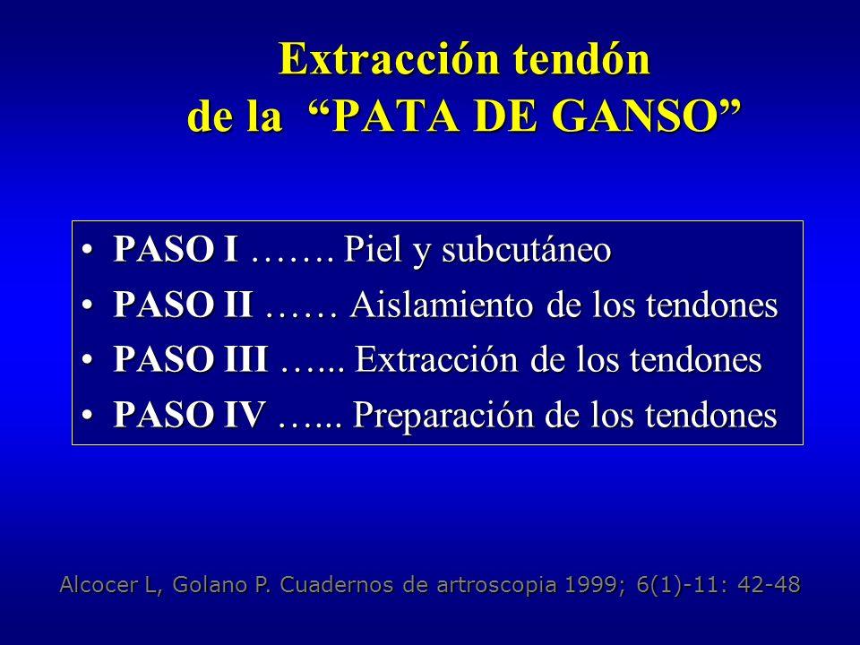 PATA DE GANSO Paso I: piel y subcutáneo Incisión piel y TCS Incisión piel y TCS