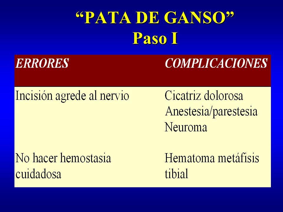 PATA DE GANSO Paso II: aislamiento tendones Identificación fascia sartorio Apertura fascia