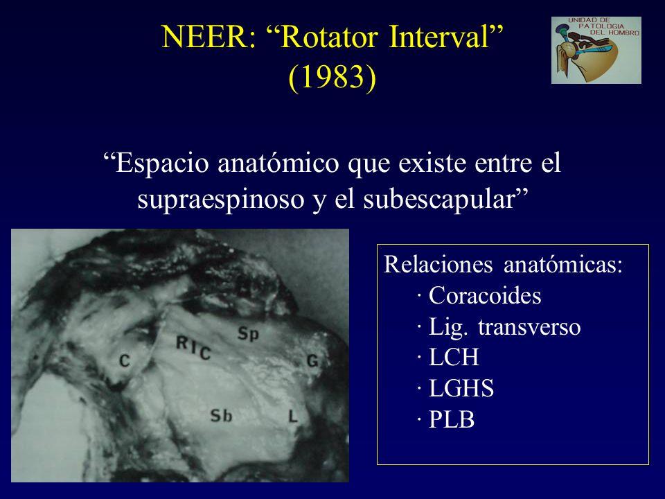 NEER: Rotator Interval (1983) Espacio anatómico que existe entre el supraespinoso y el subescapular Relaciones anatómicas: · Coracoides · Lig.