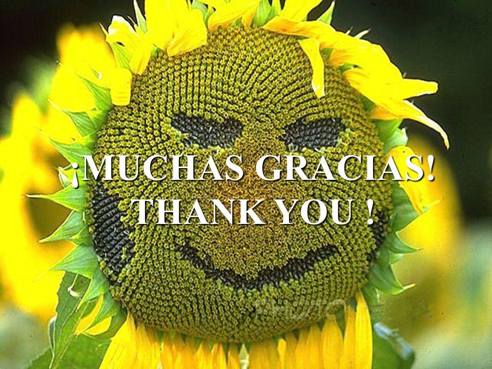 ¡MUCHAS GRACIAS! THANK YOU !