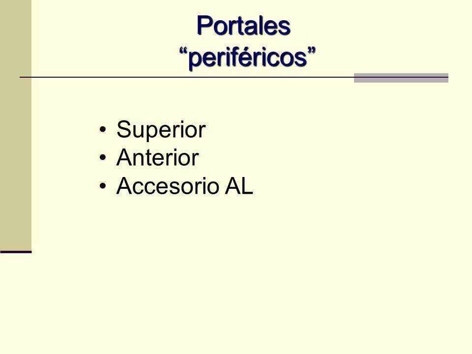 Anterolateral Control RX Margen superior-anterior de trocánter mayor Paralelo al suelo Zona segura Atraviesa glúteo medio Nervio glúteo superior a 4.4 cm