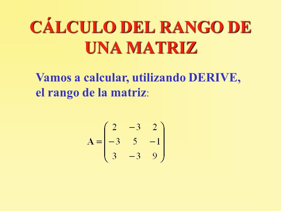CÁLCULO DEL RANGO DE UNA MATRIZ Vamos a calcular, utilizando DERIVE, el rango de la matriz :