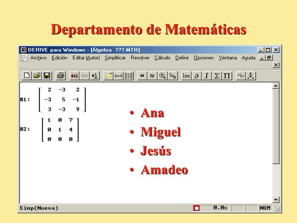 Departamento de Matemáticas AnaAna MiguelMiguel JesúsJesús AmadeoAmadeo