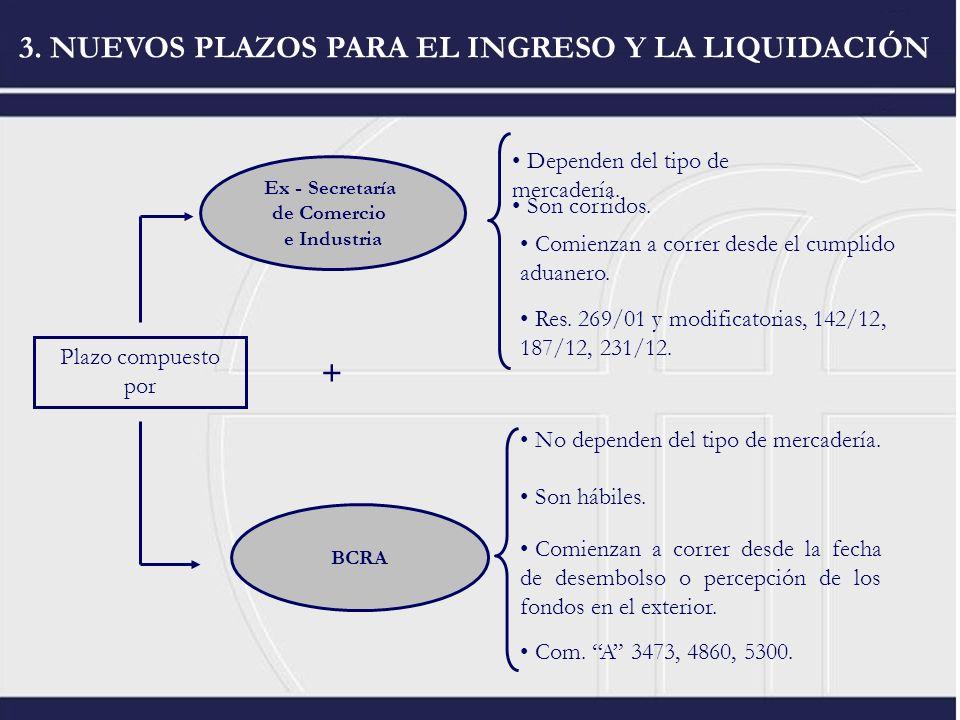 3. NUEVOS PLAZOS PARA EL INGRESO Y LA LIQUIDACIÓN Plazo compuesto por Ex - Secretaría de Comercio e Industria BCRA + Dependen del tipo de mercadería.