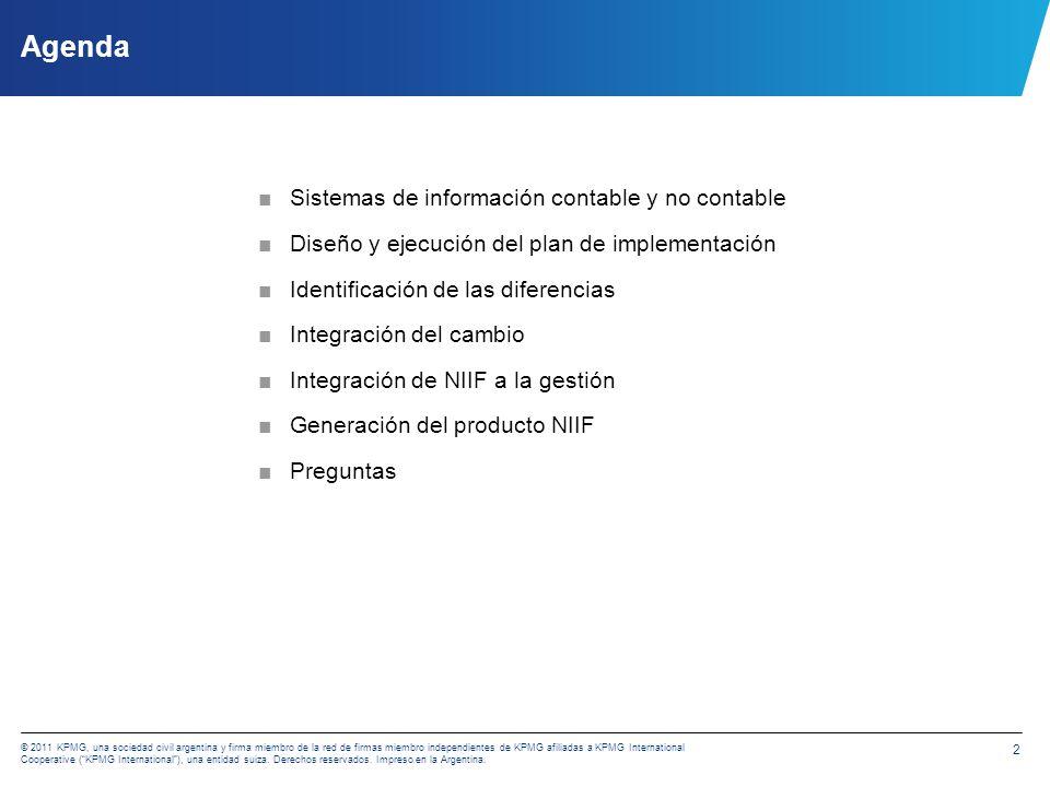 Efectos de la implementación de las NIIF sobre los sistemas de información contable y no contable Graciela C.