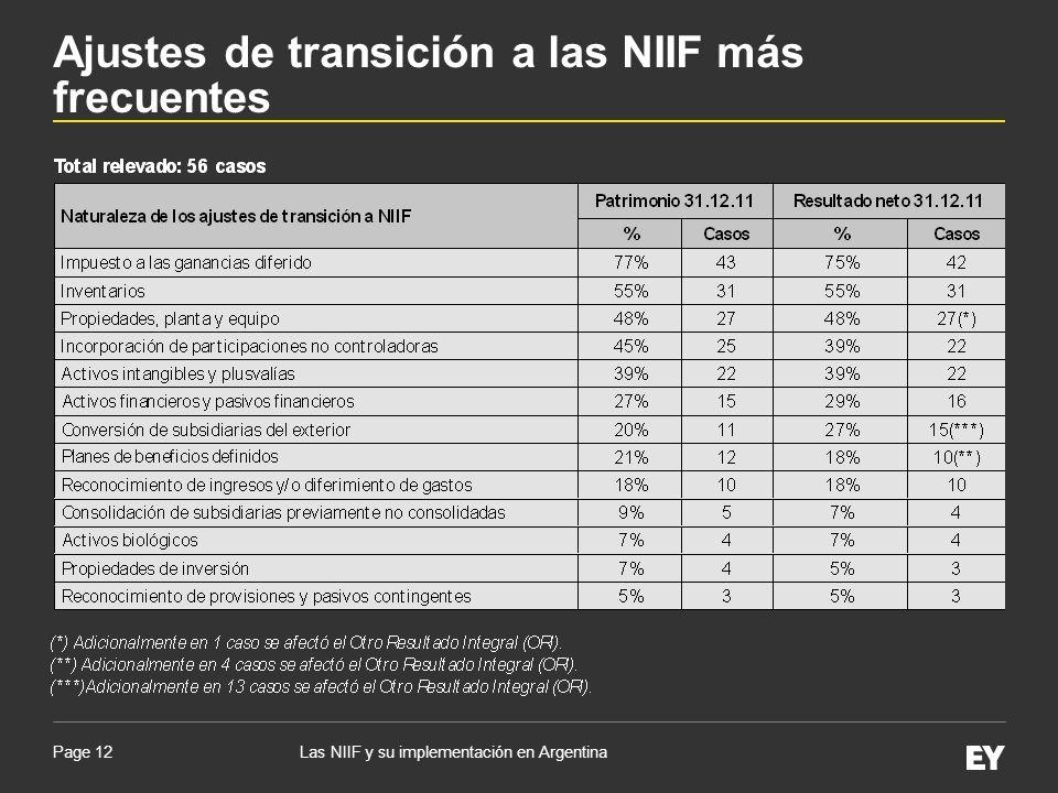 Page 12Las NIIF y su implementación en Argentina Ajustes de transición a las NIIF más frecuentes