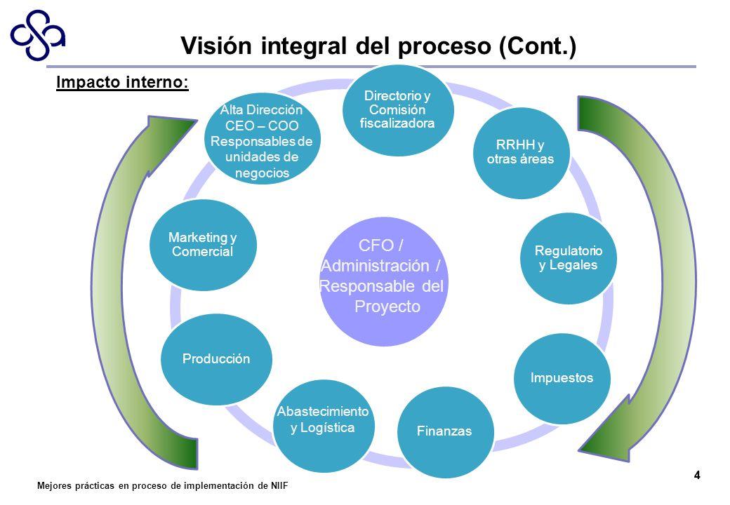 Mejores prácticas en proceso de implementación de NIIF Directorio y Comisión fiscalizadora RRHH y otras áreas Regulatorio y Legales ImpuestosFinanzasP