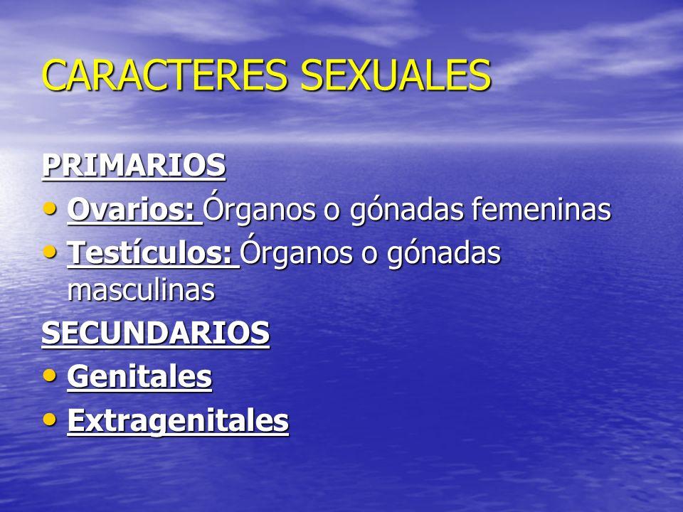 CARACTERES SEXUALES PRIMARIOS Ovarios: Órganos o gónadas femeninas Ovarios: Órganos o gónadas femeninas Testículos: Órganos o gónadas masculinas Testí