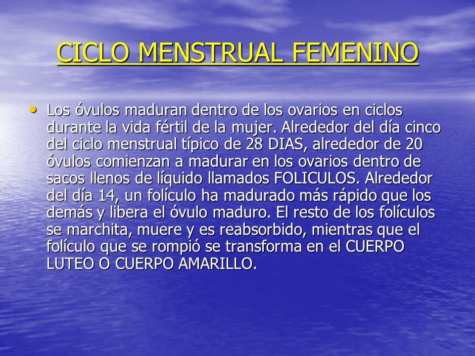CICLO MENSTRUAL FEMENINO Los óvulos maduran dentro de los ovarios en ciclos durante la vida fértil de la mujer. Alrededor del día cinco del ciclo mens