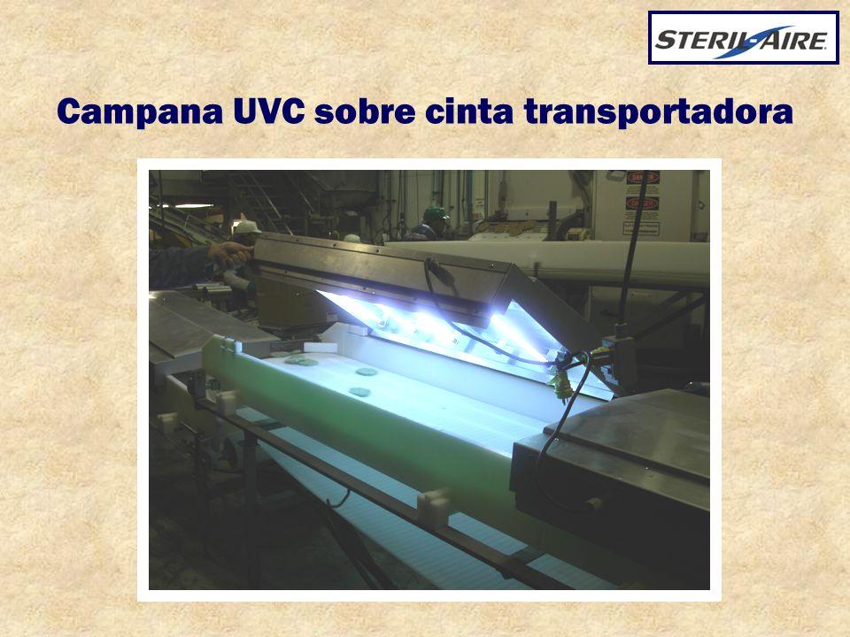 Campana UVC sobre cinta transportadora