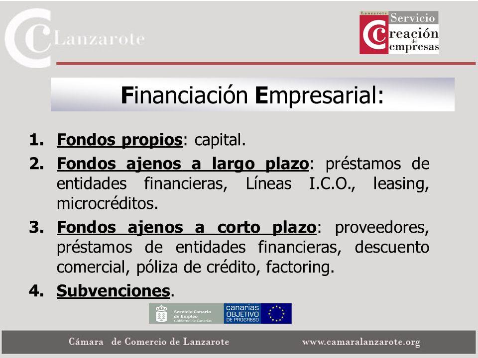 Financiación Empresarial: 1.Fondos propios: capital. 2.Fondos ajenos a largo plazo: préstamos de entidades financieras, Líneas I.C.O., leasing, microc