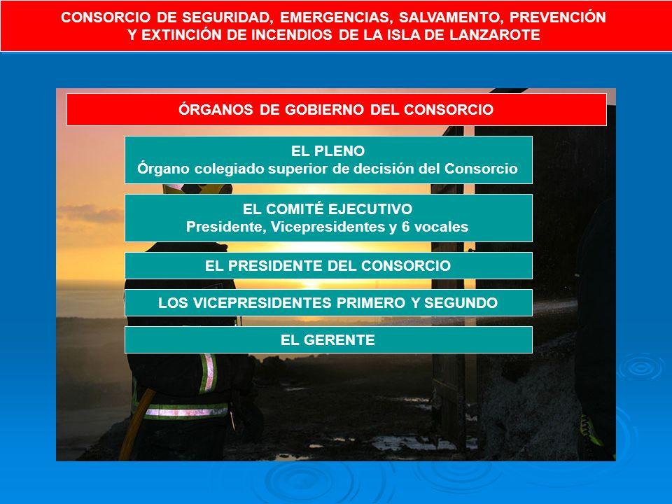 CONSORCIO DE SEGURIDAD, EMERGENCIAS, SALVAMENTO, PREVENCIÓN Y EXTINCIÓN DE INCENDIOS DE LA ISLA DE LANZAROTE CONSORCIO DE SEGURIDAD, EMERGENCIAS, SALVAMENTO, PREVENCIÓN Y EXTINCIÓN DE INCENDIOS DE LA ISLA DE LANZAROTE ÓRGANOS DE GOBIERNO DEL CONSORCIO EL PLENO Órgano colegiado superior de decisión del Consorcio EL COMITÉ EJECUTIVO Presidente, Vicepresidentes y 6 vocales EL PRESIDENTE DEL CONSORCIO LOS VICEPRESIDENTES PRIMERO Y SEGUNDO EL GERENTE