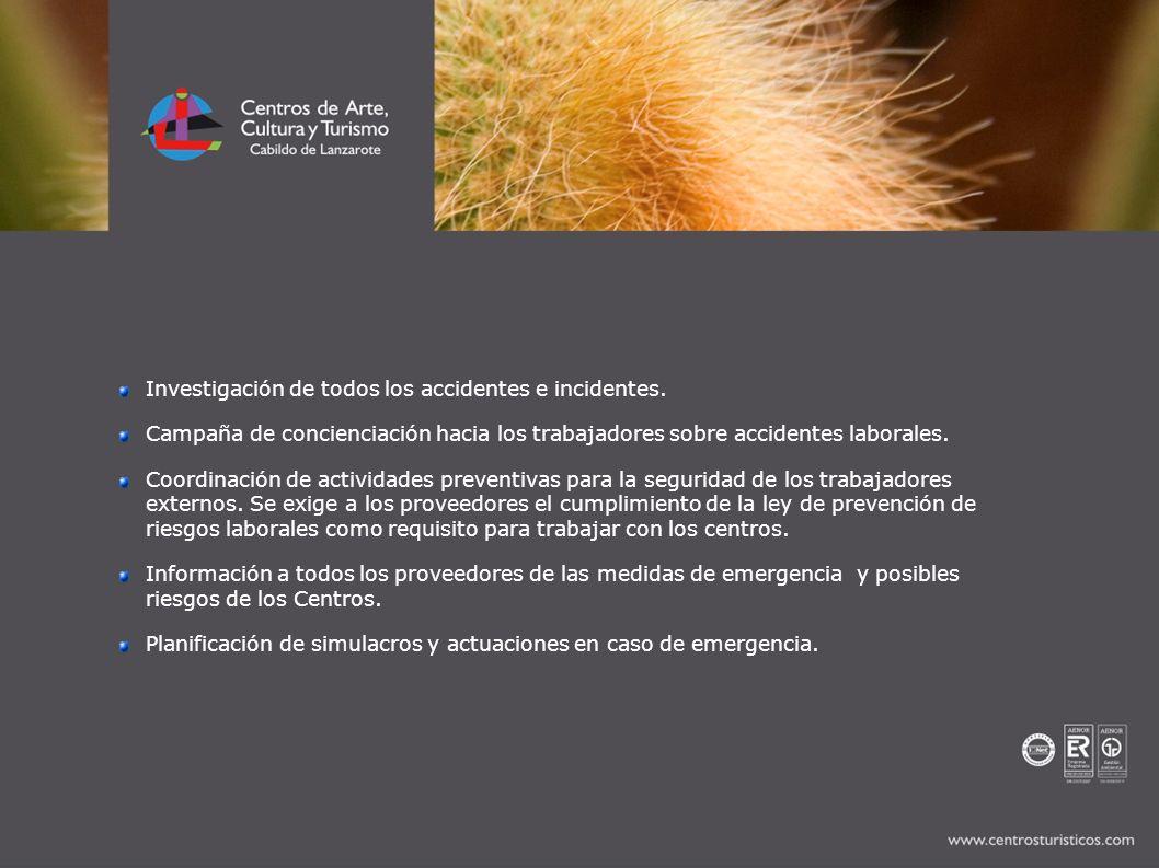 Investigación de todos los accidentes e incidentes. Campaña de concienciación hacia los trabajadores sobre accidentes laborales. Coordinación de activ