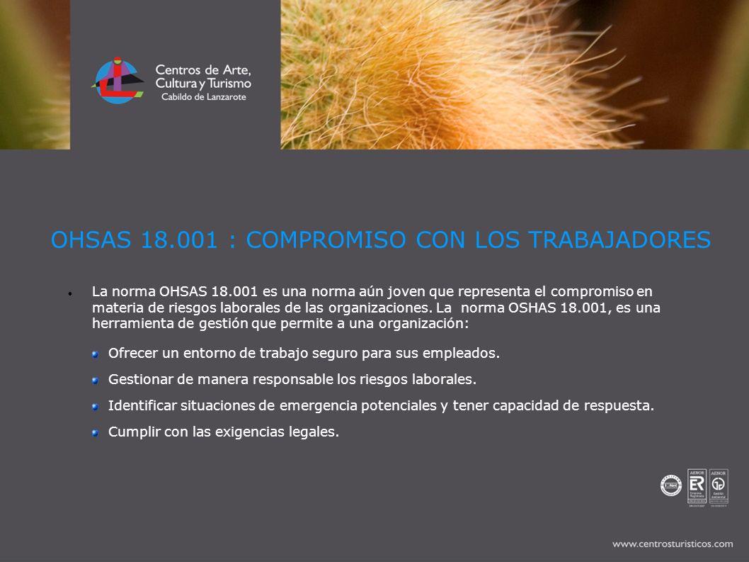 OHSAS 18.001 : COMPROMISO CON LOS TRABAJADORES La norma OHSAS 18.001 es una norma aún joven que representa el compromiso en materia de riesgos laboral