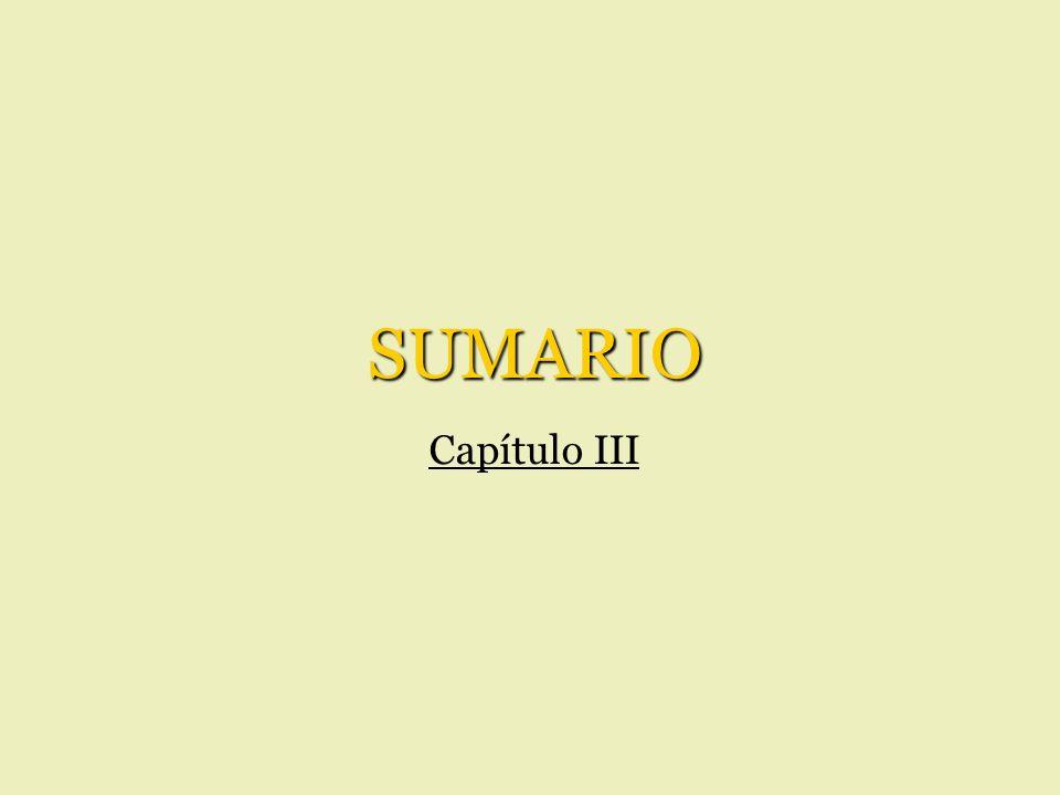 SUMARIO Capítulo III