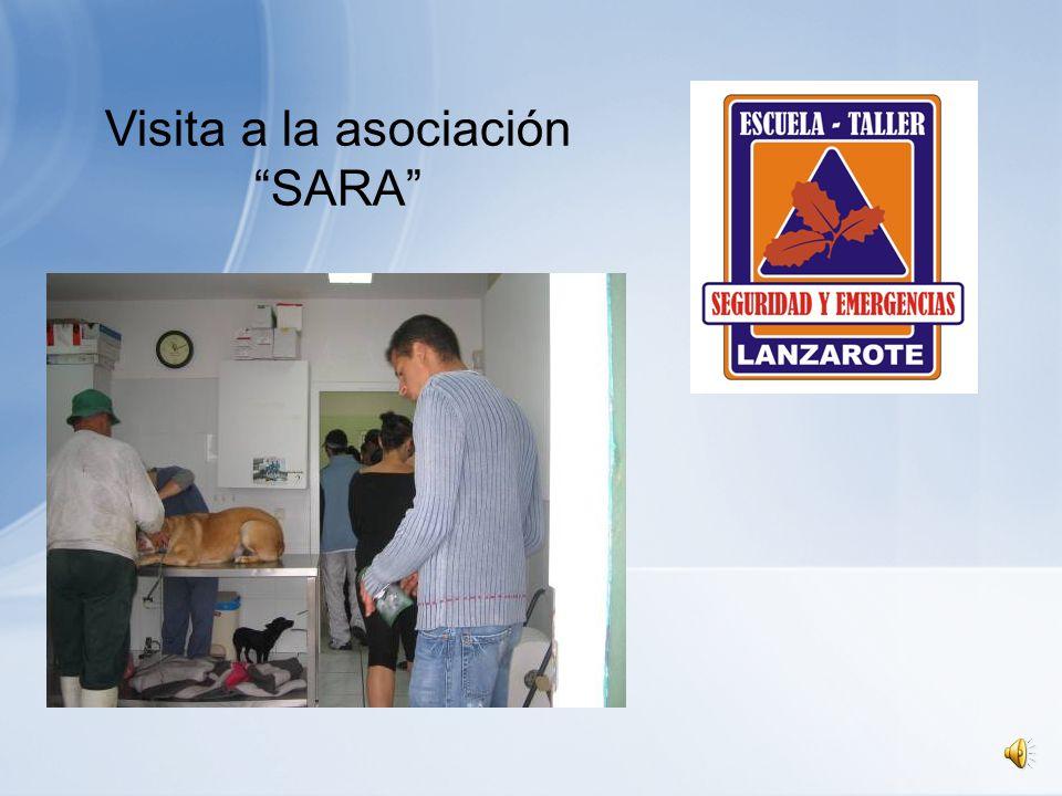 Visita a la asociación SARA