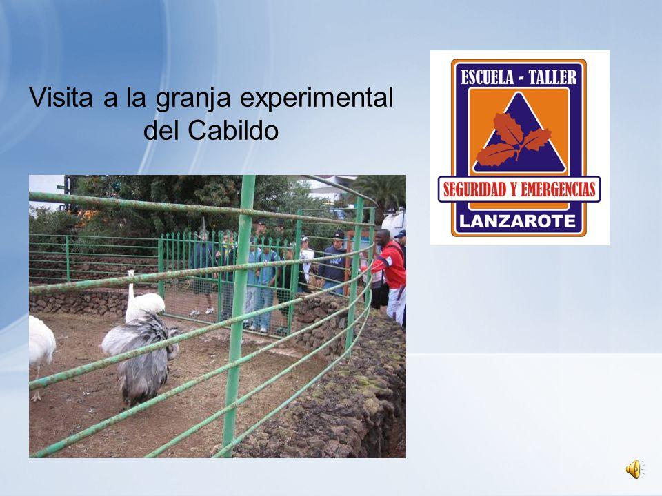 Visita a la granja experimental del Cabildo