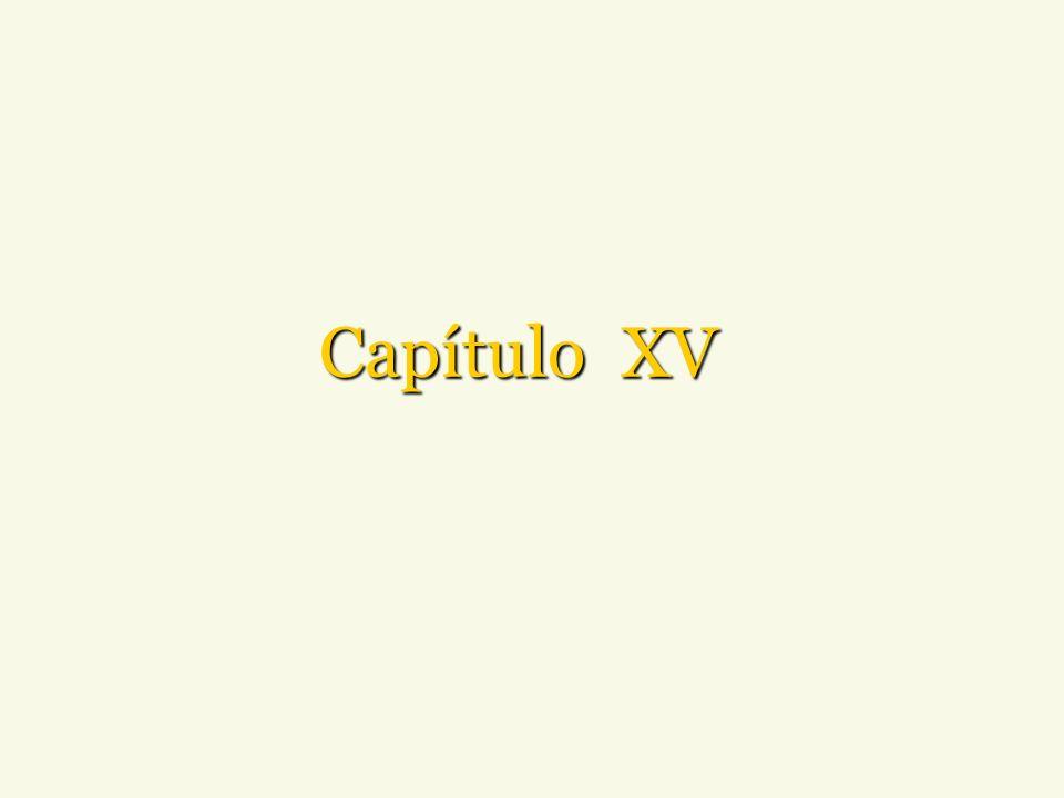 Capítulo XV