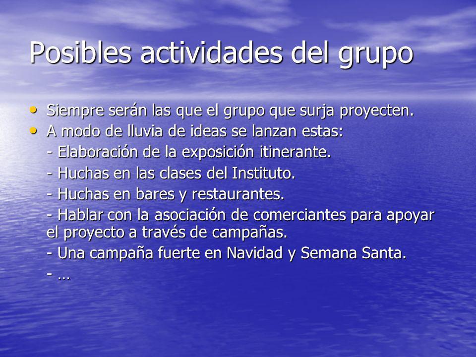 Posibles actividades del grupo Siempre serán las que el grupo que surja proyecten.