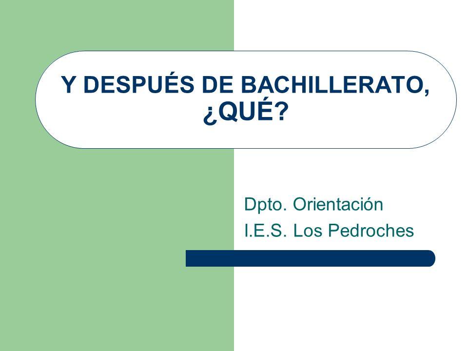 Posibilidades… FIN DE BACHILLERATO P.A.U.