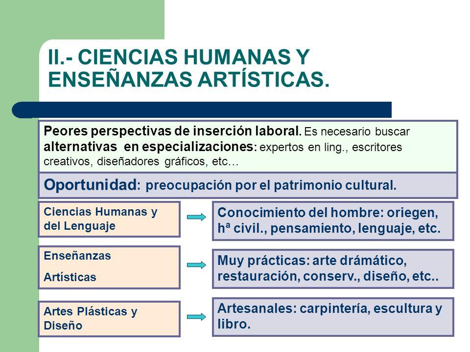 II.- CIENCIAS HUMANAS Y ENSEÑANZAS ARTÍSTICAS. Peores perspectivas de inserción laboral. Es necesario buscar alternativas en especializaciones : exper
