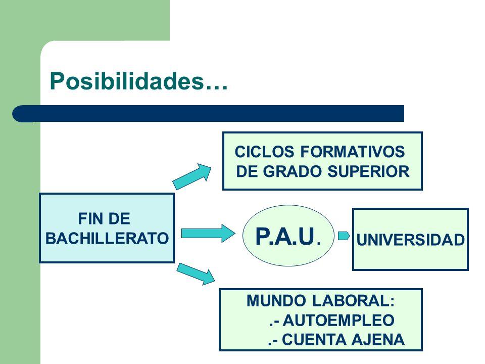 Posibilidades… FIN DE BACHILLERATO P.A.U. MUNDO LABORAL:.- AUTOEMPLEO.- CUENTA AJENA CICLOS FORMATIVOS DE GRADO SUPERIOR UNIVERSIDAD