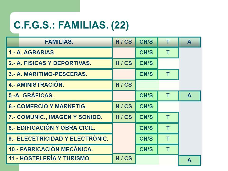 C.F.G.S.: FAMILIAS.(22) 22.- VIDRIO Y CERÁMICA 14.- INFORMÁTICA.
