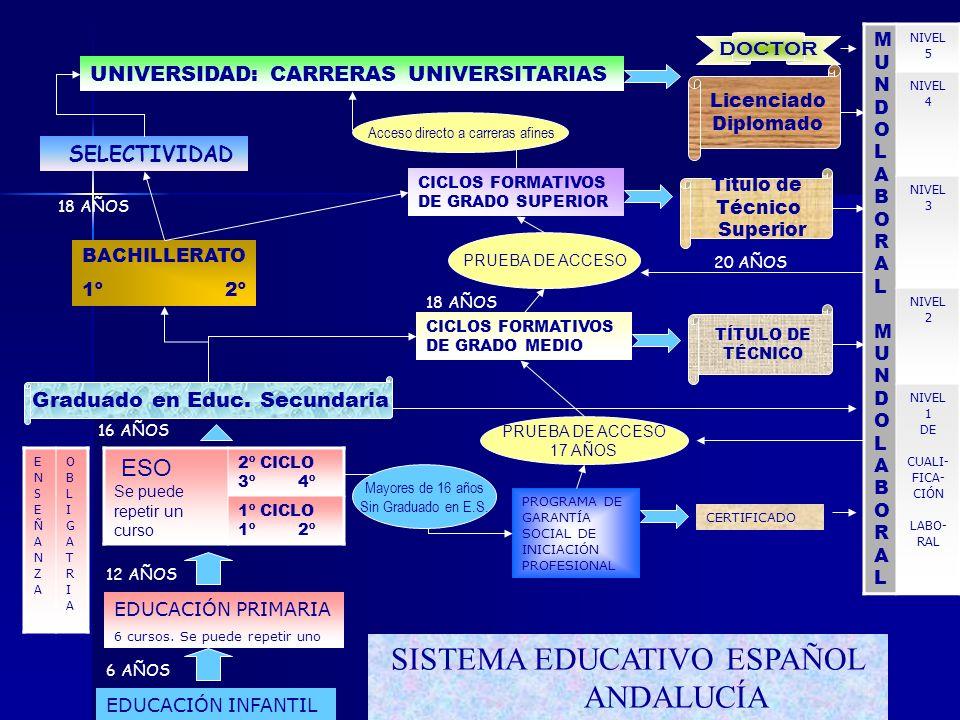 SISTEMA EDUCATIVO ESPAÑOL ANDALUCÍA EDUCACIÓN INFANTIL 6 AÑOS EDUCACIÓN PRIMARIA 6 cursos.