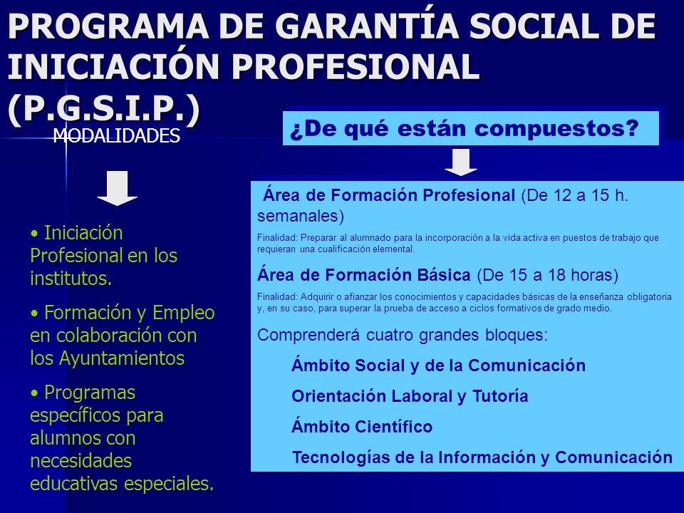 PROGRAMA DE GARANTÍA SOCIAL DE INICIACIÓN PROFESIONAL (P.G.S.I.P.) MODALIDADES Iniciación Profesional en los institutos.