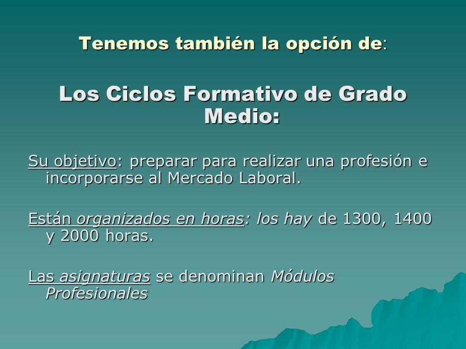 Tenemos también la opción de : Los Ciclos Formativo de Grado Medio: Su objetivo: preparar para realizar una profesión e incorporarse al Mercado Laboral.