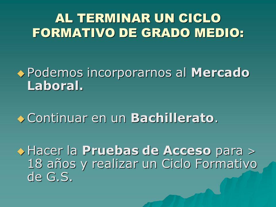 AL TERMINAR UN CICLO FORMATIVO DE GRADO MEDIO: Podemos incorporarnos al Mercado Laboral.