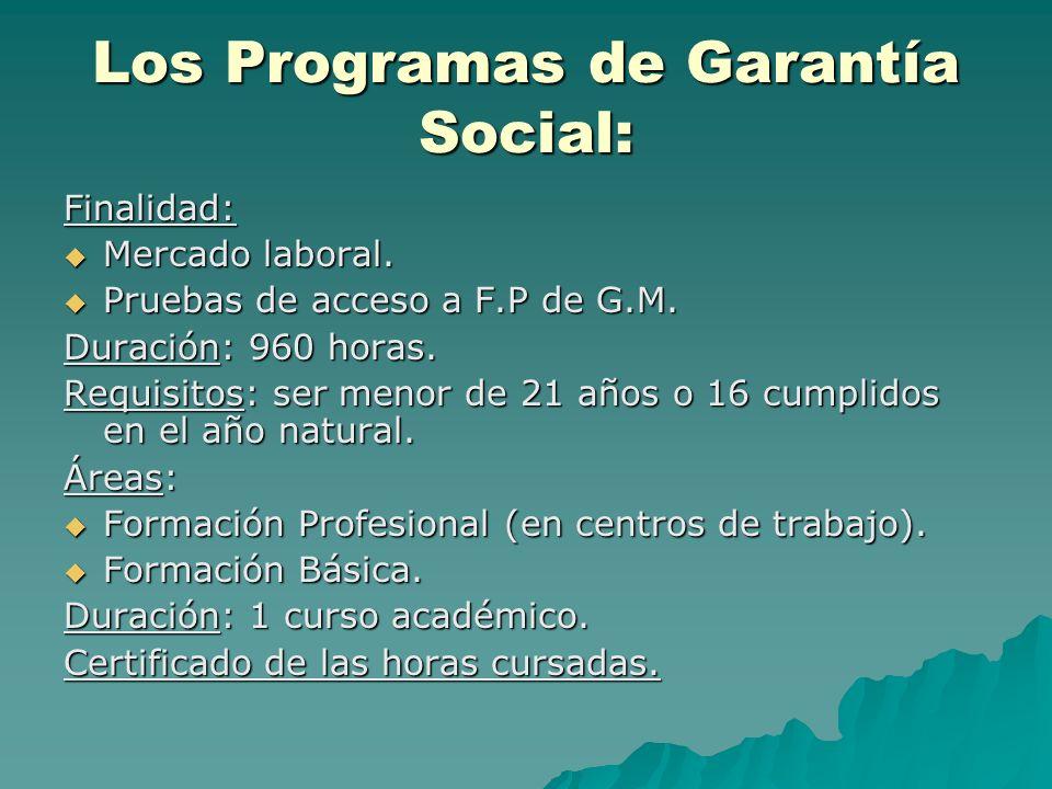 Los Programas de Garantía Social: Finalidad: Mercado laboral. Mercado laboral. Pruebas de acceso a F.P de G.M. Pruebas de acceso a F.P de G.M. Duració