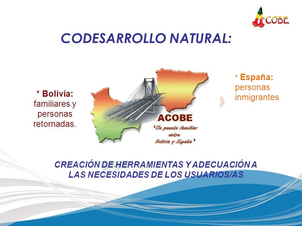 * Bolivia: familiares y personas retornadas. * España: personas inmigrantes CREACIÓN DE HERRAMIENTAS Y ADECUACIÓN A LAS NECESIDADES DE LOS USUARIOS/AS