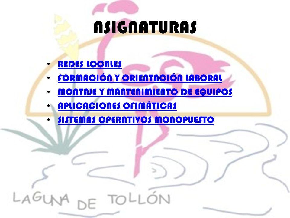 ASIGNATURAS REDES LOCALES FORMACIÓN Y ORIENTACIÓN LABORAL MONTAJE Y MANTENIMIENTO DE EQUIPOS APLICACIONES OFIMÁTICAS SISTEMAS OPERATIVOS MONOPUESTO