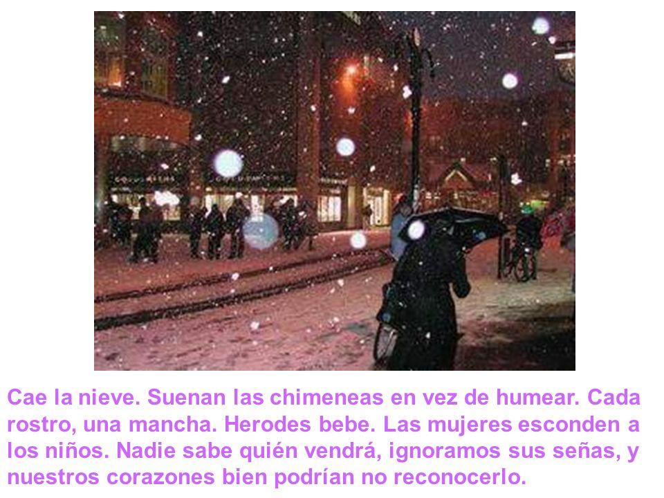 Cae la nieve. Suenan las chimeneas en vez de humear. Cada rostro, una mancha. Herodes bebe. Las mujeres esconden a los niños. Nadie sabe quién vendrá,