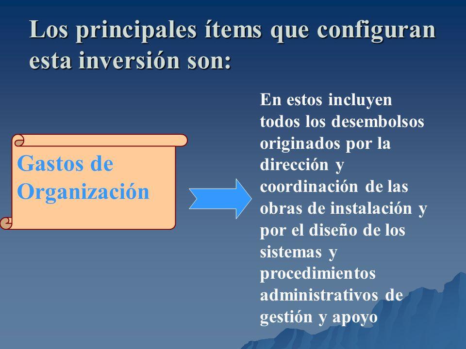 Los principales ítems que configuran esta inversión son: Gastos de Organización En estos incluyen todos los desembolsos originados por la dirección y