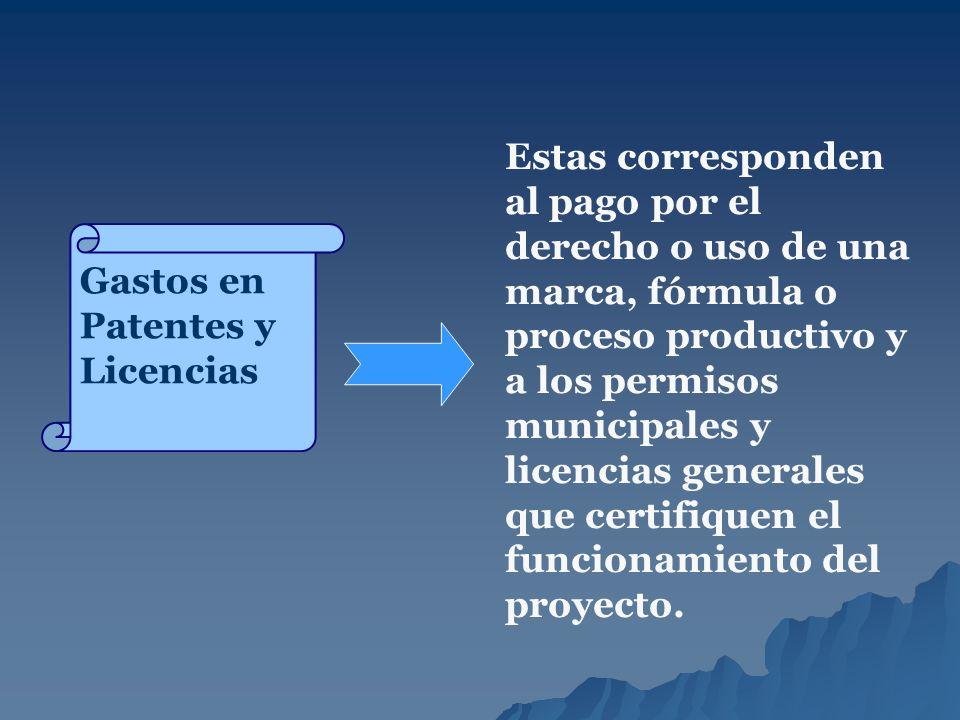 Gastos en Patentes y Licencias Estas corresponden al pago por el derecho o uso de una marca, fórmula o proceso productivo y a los permisos municipales
