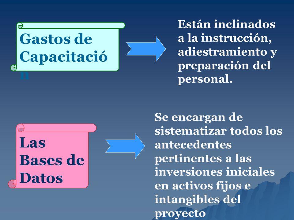 Gastos de Capacitació n Están inclinados a la instrucción, adiestramiento y preparación del personal. Las Bases de Datos Se encargan de sistematizar t