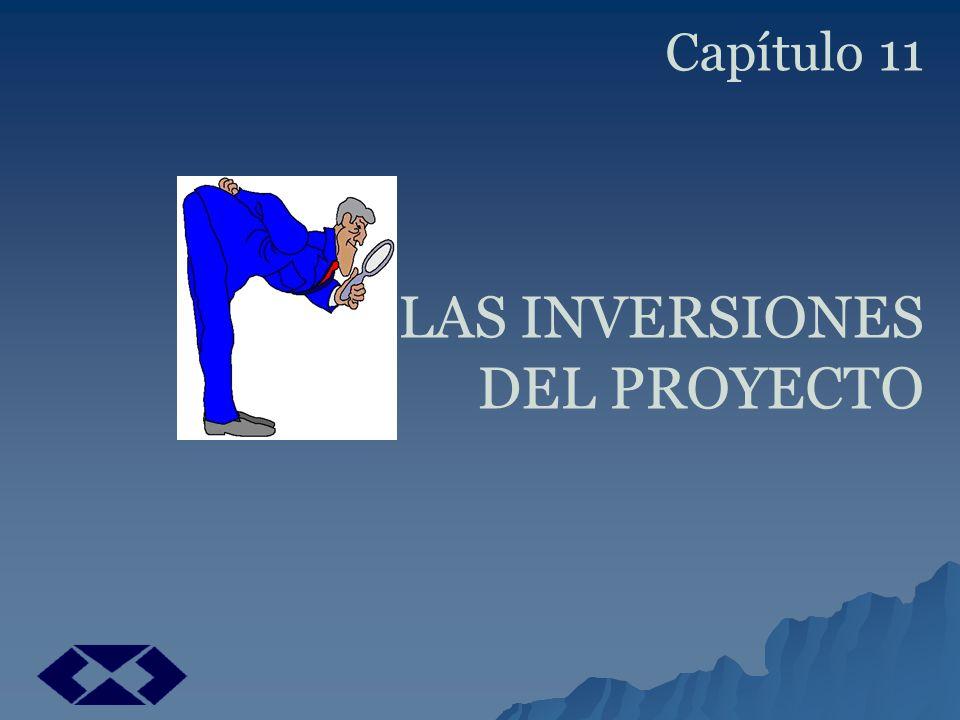 Capítulo 11 LAS INVERSIONES DEL PROYECTO