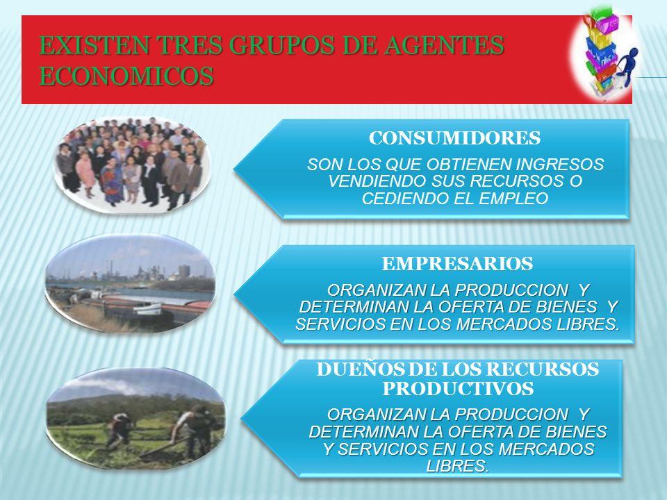 CANTIDAD DEMANDADA VARIA INVERSAMENTE CON EL PRECIO CUANDO EL INGRESO Y LOS PRECIOS DE OTROS BIENES PERMANECEN CONSTANTES.