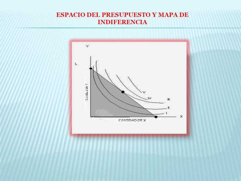 ESPACIO DEL PRESUPUESTO Y MAPA DE INDIFERENCIA L M CANTIDAD DE Y CANTIDAD DE X
