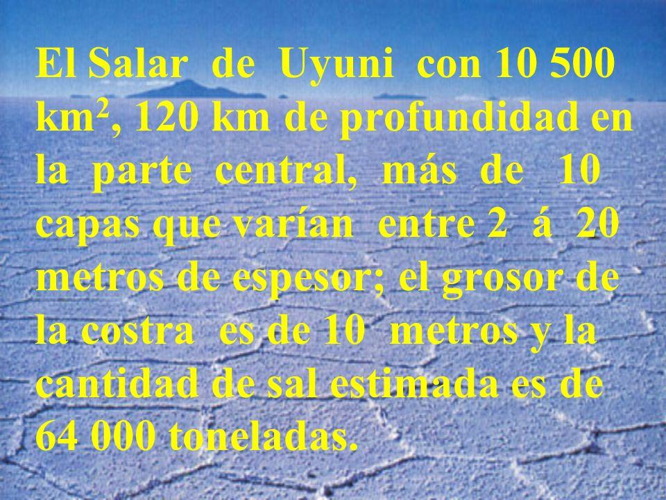El Salar de Uyuni con 10 500 km 2, 120 km de profundidad en la parte central, más de 10 capas que varían entre 2 á 20 metros de espesor; el grosor de la costra es de 10 metros y la cantidad de sal estimada es de 64 000 toneladas.